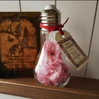 SOLD OUT  桜の灯り*.゚ ボトルフラワー(その他)