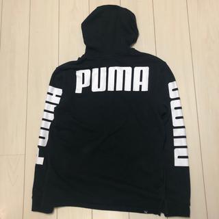 PUMA - PUMA フルロゴ パーカー Mサイズ になります。
