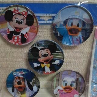Disney - 実写柄コースターセット