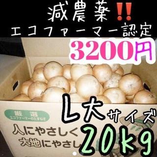 まもなく終了 北海道産 減農薬 玉ねぎ L大サイズ 20キロ(野菜)