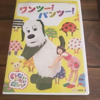 NHKDVD いないいないばあっ! ワンツー!パンツー! DVD(キッズ/ファミリー)