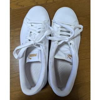 PUMA - PUMA 靴