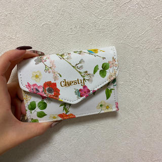 Chesty - chesty 美人百花 コインケース