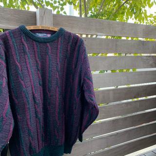 インバーアラン(INVERALLAN)のThe British Wool Collection ニット(ニット/セーター)