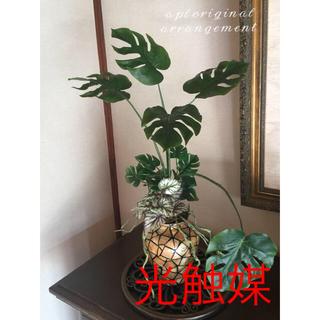 光触媒 人工観葉植物 モードモンステラ6445