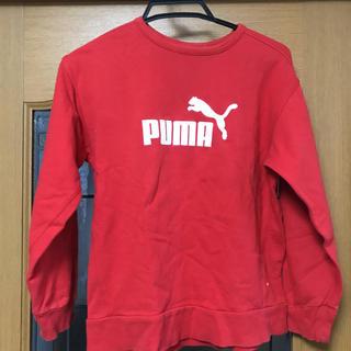 PUMA - プーマ トレーナー