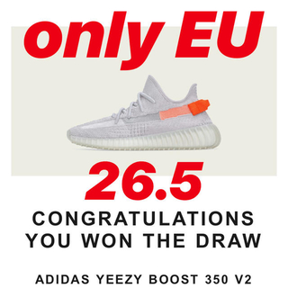 adidas - Yeezy Boost 350 V2 tail light 26.5