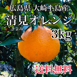 減農薬  清美オレンジ  3キロ ノーワックス 広島県産 大崎上島 もぎたて(フルーツ)