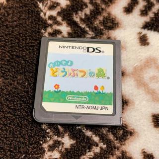 ニンテンドーDS - おいでよ どうぶつの森 DS カセット ソフト 中古 任天堂 Nintendo