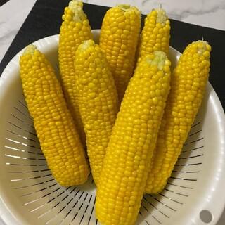 *coka様専用*高田農場のスイートコーン 「ゴールドラッシュ」 10kg(野菜)