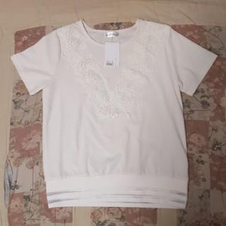 Tシャツ Mサイズ(Tシャツ(半袖/袖なし))