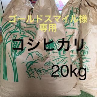 ゴールドスマイル様  コシヒカリ20kg(米/穀物)
