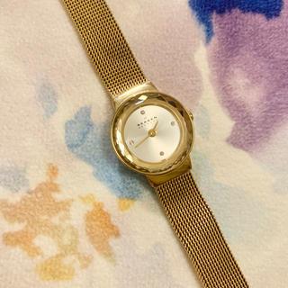 スカーゲン(SKAGEN)のSKAGEN ゴールドウォッチ レディース(腕時計)