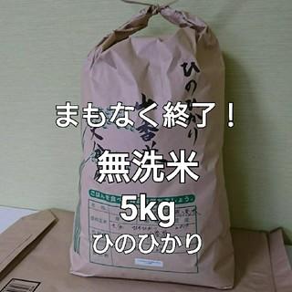 まもなく終了! 5kg 無洗米 令和元年 大分県産 ひのひかり 山香米