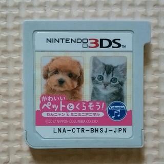 ニンテンドー3DS - 3DS かわいいペットとくらそう!