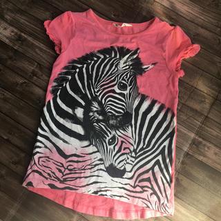 エイチアンドエム(H&M)のH&M  ゼブラ  Tシャツ(Tシャツ/カットソー)