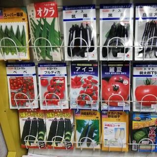 野菜の種(新種)×18袋その④(野菜)