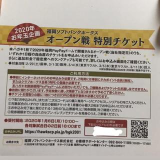 ソフトバンク ホークス オープン戦 ペア 招待 チケット PayPayドーム
