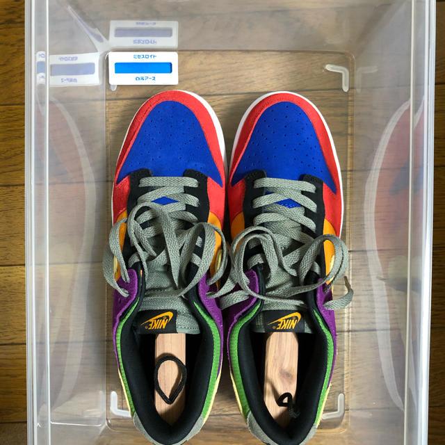 NIKE(ナイキ)のNIKE DUNK LOW SP VIOTECH バイオテック27.5 メンズの靴/シューズ(スニーカー)の商品写真