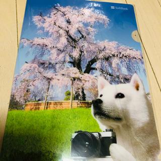 ソフトバンク(Softbank)の【新品】ソフトバンクお父さん犬 クリアファイル  非売品(クリアファイル)