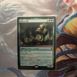 マジックザギャザリング(マジック:ザ・ギャザリング)のmtg 探索する獣 foil(シングルカード)