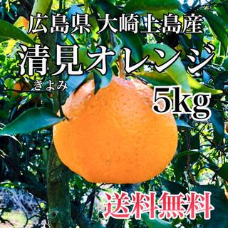 減農薬  清美オレンジ  5キロ ノーワックス 広島県産 大崎上島 もぎたて(フルーツ)