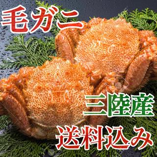 岩手県産・毛蟹・毛ガニ・天然物