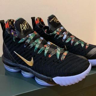 NIKE - 27.5cm Nike LEBRON 16 KING´S THRONE