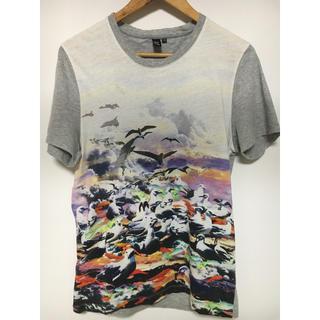 アレキサンダーマックイーン(Alexander McQueen)のアレクサンダーマックイーン Tシャツ(Tシャツ/カットソー(半袖/袖なし))