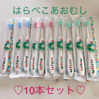 【歯科専売】はらぺこあむし歯ブラシ10本