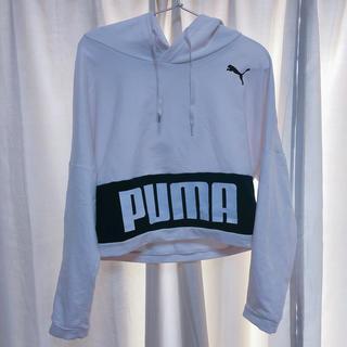 PUMA - 【PUMA】フード付きパーカー