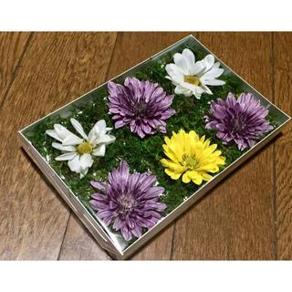 お花屋さんが作ったセイヨウマムのドライフラワーお詰め合わせ  ②(ドライフラワー)