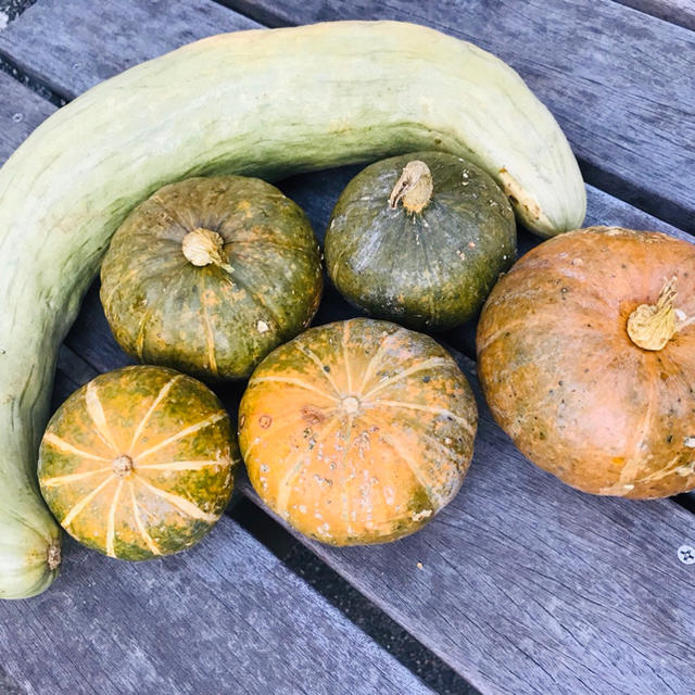 無農薬野菜詰め合わせ 食品/飲料/酒の食品(野菜)の商品写真