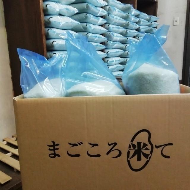 はる様専用 食品/飲料/酒の食品(米/穀物)の商品写真