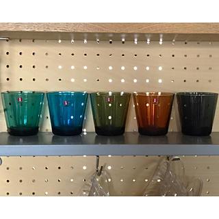 イッタラ(iittala)のイッタラ 新品カルティオ5個 ダークグレー ターコイズ レアカラー(グラス/カップ)