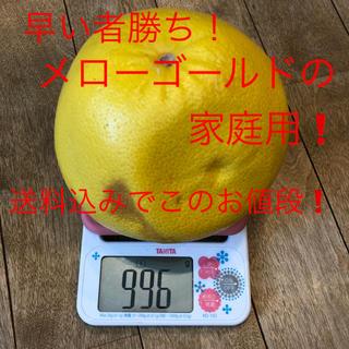 メローゴールド平均900g越え 4個セット ご家庭用(フルーツ)