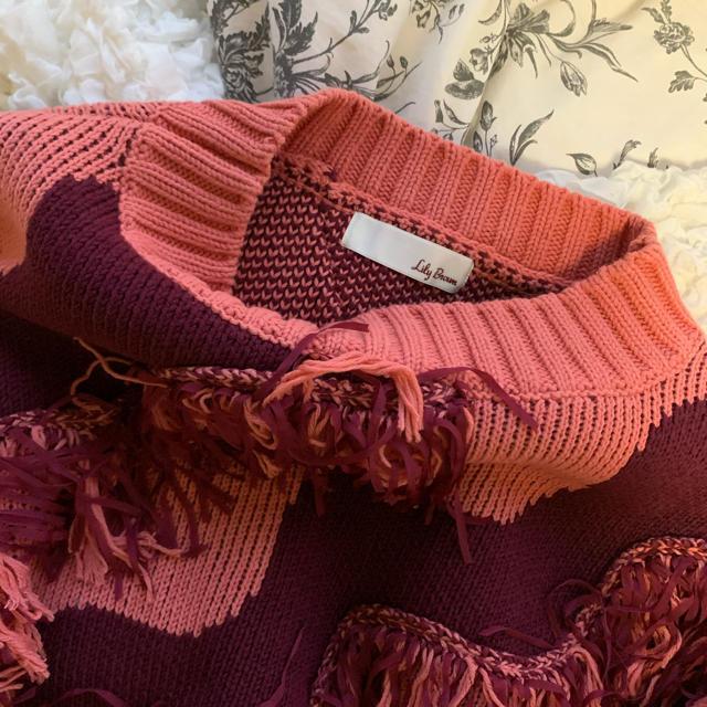 Lily Brown(リリーブラウン)のリリーブラウン フリンジニット 美品 レディースのトップス(ニット/セーター)の商品写真