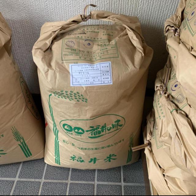 ★新米★福井県産コシヒカリ玄米20kg 食品/飲料/酒の食品(米/穀物)の商品写真