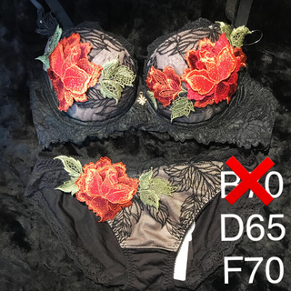 Wacoal - サルート 店舗限定商品 B70.D65.D70