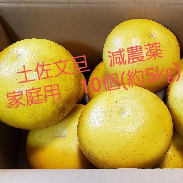 土佐文旦 減農薬 家庭用 10個(約5㎏)入り 食品/飲料/酒の食品(フルーツ)の商品写真
