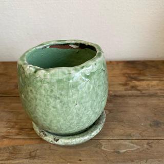 優しいグリーンの陶器鉢*アンジェラ*緑*S(プランター)