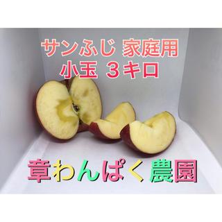 激安セール! サンふじ 家庭用 小玉 3キロ 長野県産 減農薬 化学肥料不使用
