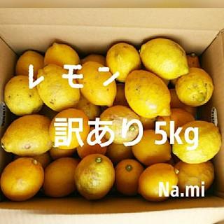 【送料無料】国産レモン / 無農薬レモン / 詰め合わせ5kg ※訳ありB品