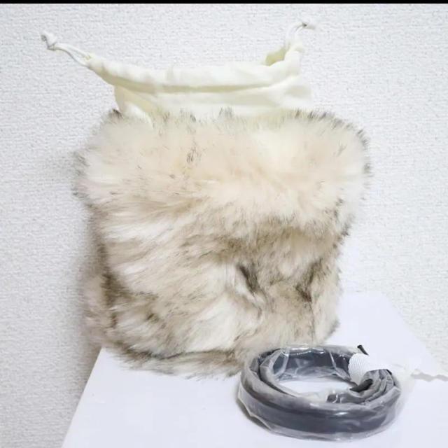 ZARA(ザラ)のZARA  ザラ  かごバッグ ファー 巾着 レディースのバッグ(ショルダーバッグ)の商品写真