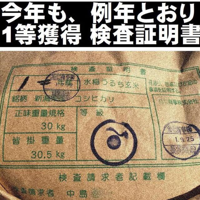 新米・令和元年産新潟コシヒカリ 白米5kg×1袋★農家直送★色彩選別済27 食品/飲料/酒の食品(米/穀物)の商品写真