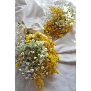 春のお花mimosa○ミモザスワッグ・ドライフラワースワッグ・swag・限定2つ(ドライフラワー)