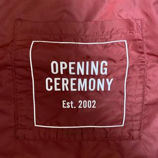 OPENING CEREMONY - opening  ceremony