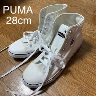 PUMA - 28cm PUMA プーマ ハイカット スニーカー キャンバス 新品未使用
