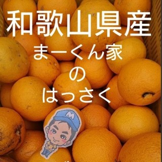和歌山県産 まーくん家のはっさく 10キロ