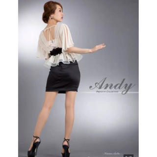 Andy - 新品未使用 Andy ナイトドレス